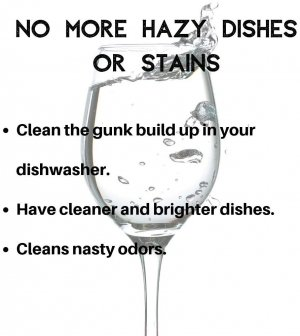best dishwasher cleaner